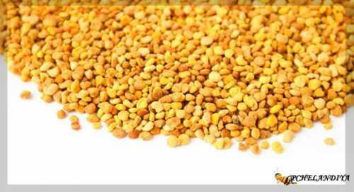 Пчелиная пыльца: польза и вред, как её