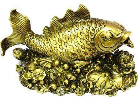 Аквариумные рыбки и фэн шуй