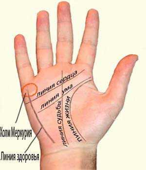 1 линия на руке, говорящая, что Вы