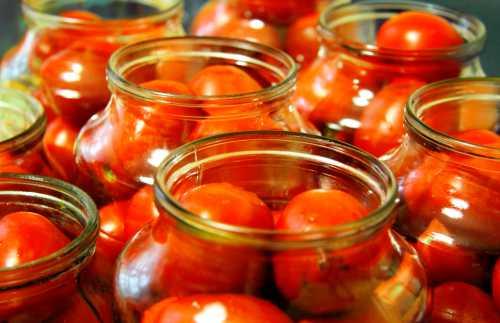 Как хранить помидоры на зиму свежими
